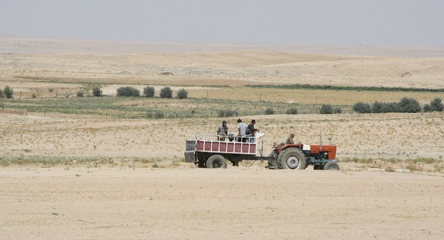 Drought, Corruption, and War: Syria's Agricultural Crisis
