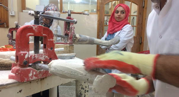 Under strain from protracted conflict, displacement, and a budgetary crisis, Iraq's health system is struggling to care for the physically disabled.