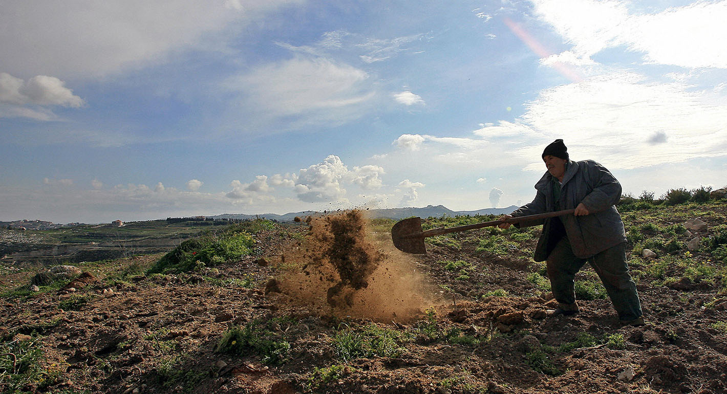 Lebanon's Food Insecurity and the Path Toward Agricultural Reform