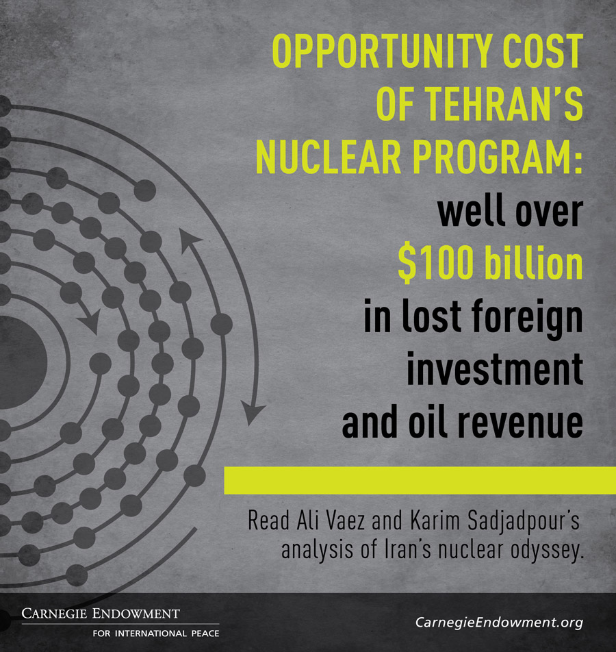 The covert history of Iran's nuclear program is marked by enormous financial costs, unpredictable risks, and unclear motivations.
