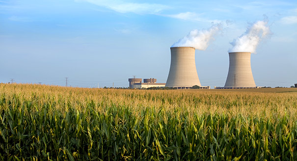 Does the U.S. Nuclear Industry Have a Future?