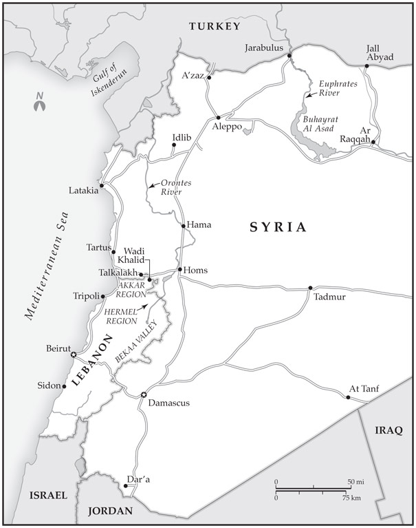 Lebanon remains vulnerable to the Syrian conflict. Although the country has avoided major upheaval so far, the state is weak, sectarian tensions are high, and political coalitions are divided along pro and anti-regime lines.
