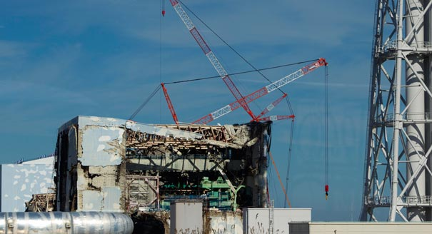 One Year On: Assessing Fukushima's Impact