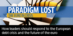Paradigm Lost - The Euro in Crisis